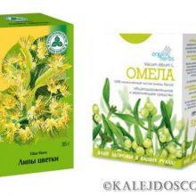 Травы для похудения: омела и липа. 5 дней- минус 5 кг!
