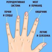 13 проблем со здоровьем, о которых предупреждают лунки на ногтях 🆘